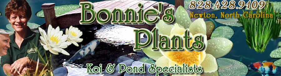 Home page of bonniesplants.com